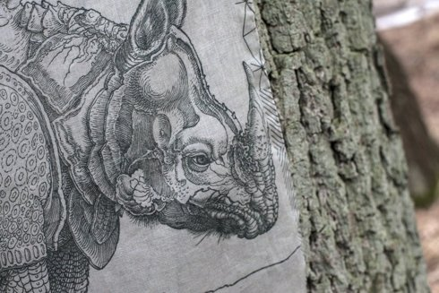 Artwork collection Albrecht Dürer Rhinocerus